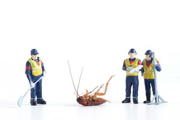Lavoratori in miniatura che analizzano scarafaggio morto