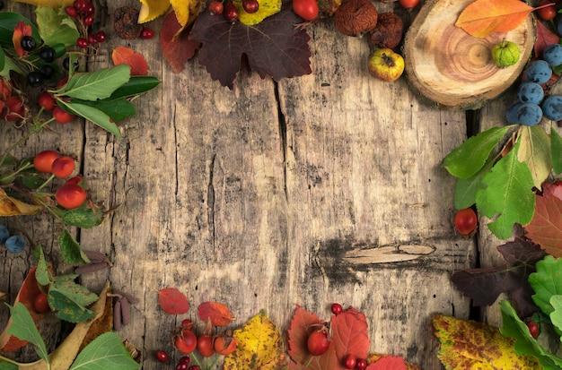 Layout autunnale di bacche e foglie di frutta secca su un tavolo in legno naturale.