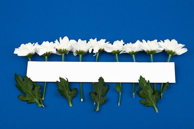 Layout creativo realizzato con fiori bianchi su sfondo blu 2020. carta di carta orizzontale mock up con fiori. nozze. 8 marzo
