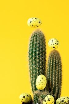 Layout creativo sfondo di pasqua. cactus con uova colorate