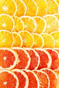 Le arance e il pompelmo naturali del modello hanno asciugato i frutti canditi affettati
