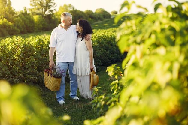Le belle coppie adulte passano il tempo in un campo dell'estate