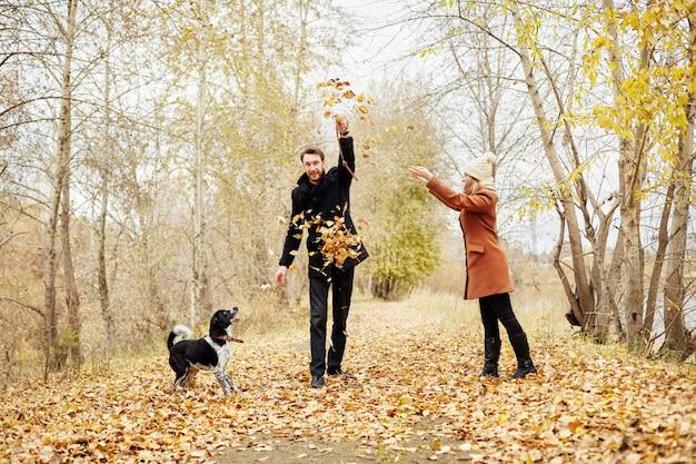 Le coppie amorose camminano attraverso il forest park di autunno con un cane spaniel