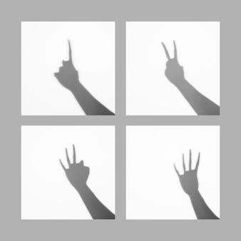 Le dita da uno a quattro dita contano l'ombra della struttura dei segni isolata sopra fondo bianco