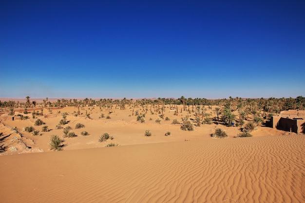 Le dune di timimun hanno abbandonato la città nel deserto del sahara, algeria