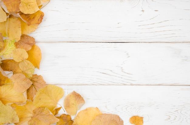 Le foglie d'autunno distese con lo spazio della copia