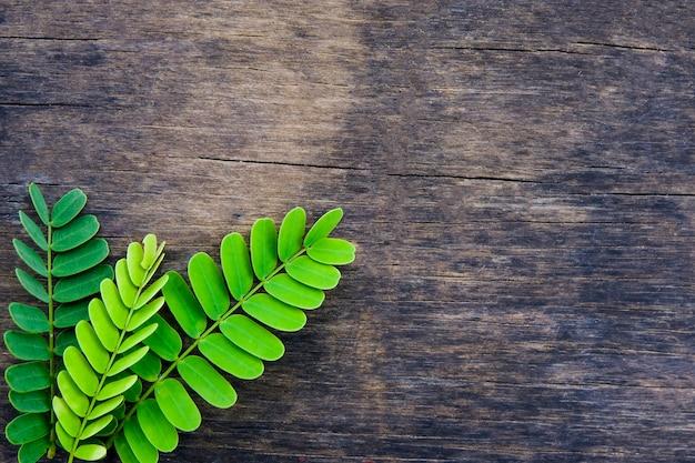 Le foglie verdi del tamarindo 3 creative indicano sulla vecchia tavola di legno per il fondo dello spazio della copia