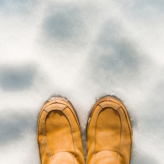 Le gambe delle donne con gli stivali nella neve