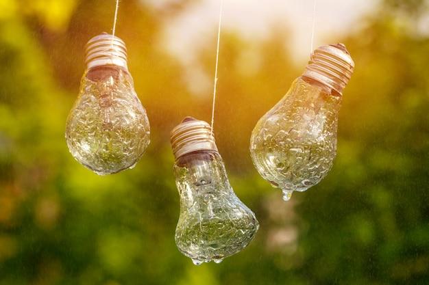 Le lampadine si appendono sul viso bagnato dalla pioggia su uno sfondo naturale.