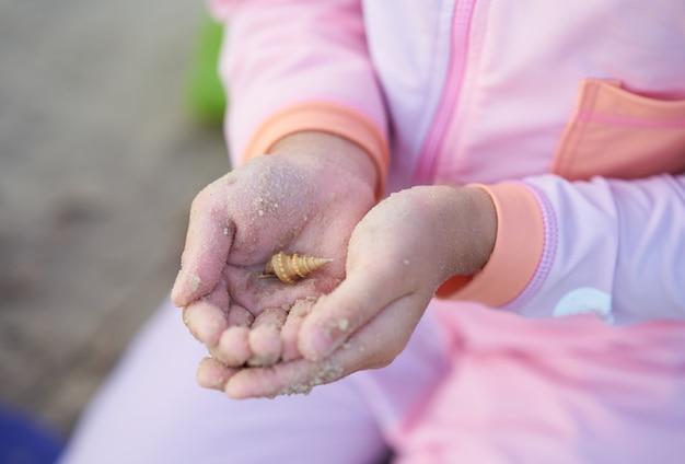 Le mani del bambino tengono la conchiglia dentro con il vestito di nuoto della sfuocatura e il bastone di sabbia a disposizione nel concetto di vacanza della spiaggia dell'estate