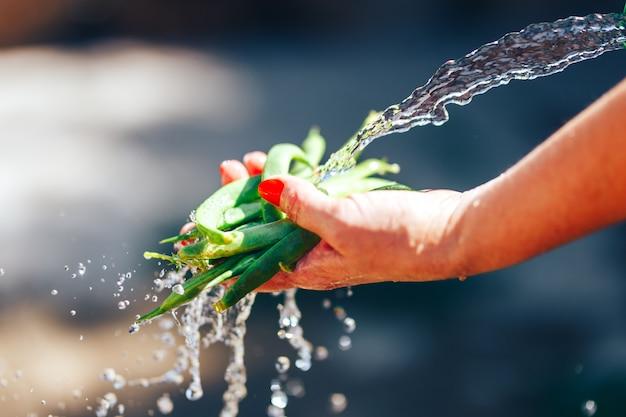 Le mani della donna che danno i piselli interi lavano sotto l'acqua all'aperto. profondità di campo molto breve
