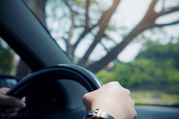 Le mani della donna che tengono sul volante nero mentre guidano un'automobile con il grande fondo dell'albero