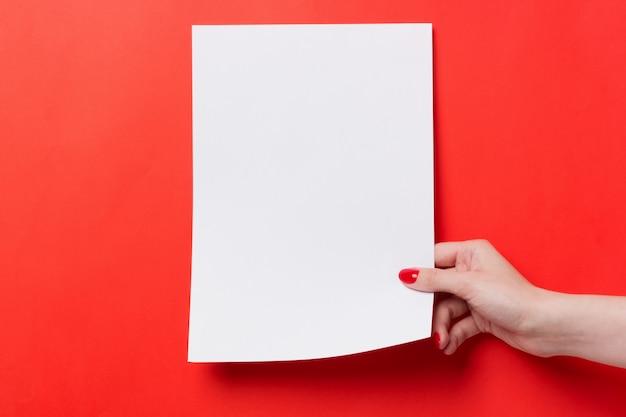 Le mani della donna che tengono un bianco una carta in bianco a4 su un fondo rosso