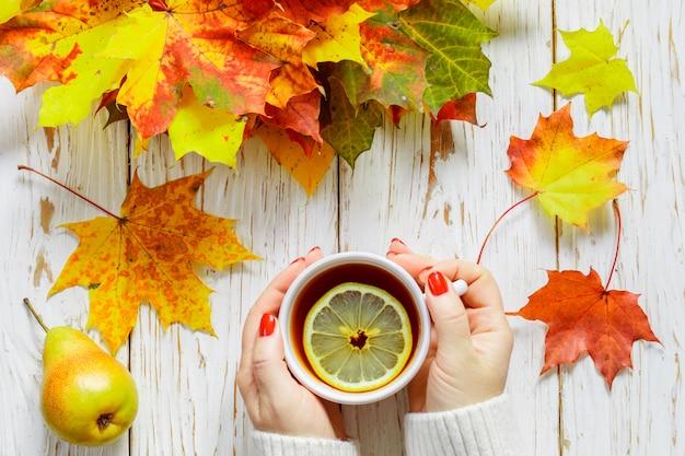Le mani delle donne che tengono una tazza di tè caldo con il limone su una tavola di legno bianca con le foglie di autunno variopinte