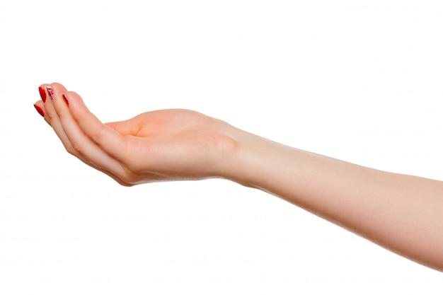 Le mani prendono il gesto del palmo aperto per tenere su bianco s, isolato