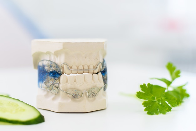 Le mascelle in ceramica con fiocco si trovano con cetriolo affettato