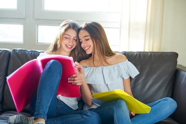 Le migliori amichevoli che studiano i compiti a casa