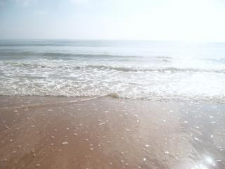 Le onde di frenatura onde prendere il sole