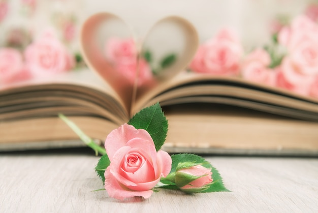 Le pagine di un vecchio libro sono curve in un cuore e rose.