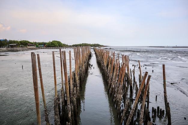 Le pareti di legno della barriera sono fatte sulla spiaggia.