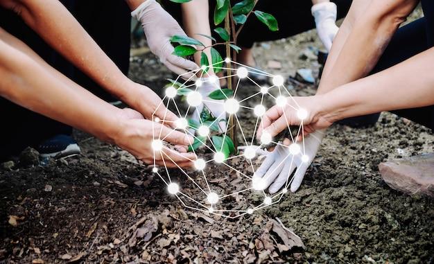 Le persone che piantano alberi per proteggere l'ambiente il concetto del mondo