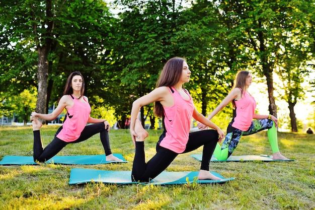 Le ragazze belle e sportive praticano yoga o fitness sull'erba verde