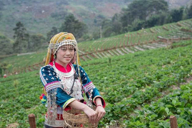 Le ragazze tribali stanno raccogliendo fragole