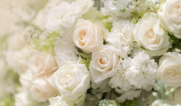 Le rose bianche di nozze miste fioriscono, fondo floreale