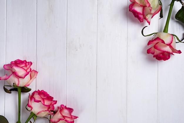 Le rose incorniciano su fondo bianco di legno