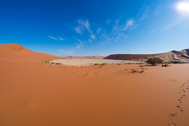 Le scenografiche sossusvlei e deadvlei, maestose dune di sabbia.