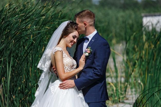 Le spose sorridenti abbracciano delicatamente e baciano all'aperto. giovani coppie nell'amore che enjoing altro sulla passeggiata in natura. sposi felici passeggiate nell'erba alta all'aperto.