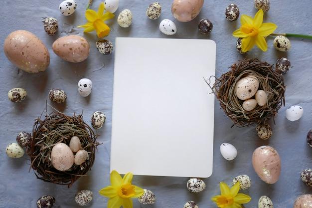 Le uova di quaglia decorative di pasqua e i narcisi gialli fioriscono su una vista superiore del fondo grigio, copiano lo spazio vacanza di pasqua.