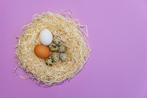 Le uova di quaglia e del pollo in paglia annidano sul lillà