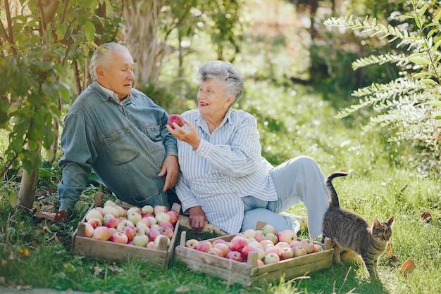 Le vecchie coppie che si siedono in un'estate fanno il giardinaggio con il raccolto