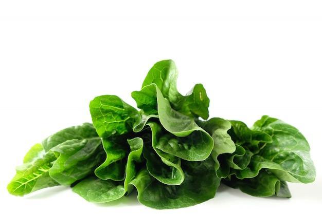 Le verdure verdi di cos hanno tagliato su un fondo bianco