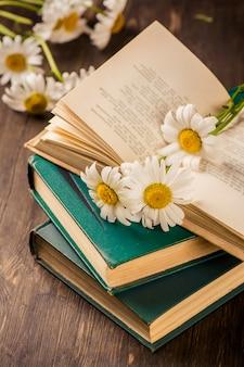 Libri d'epoca e camomilla su fondo in legno
