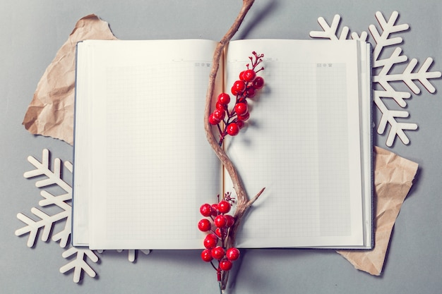 Libro aperto con bacche ornamentali e fiocchi di neve