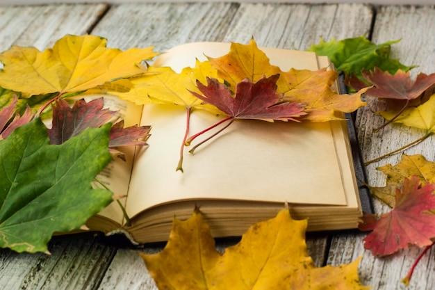 Libro aperto e foglie di acero essiccate