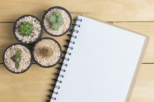 Libro bianco con cactus sul tavolo di legno