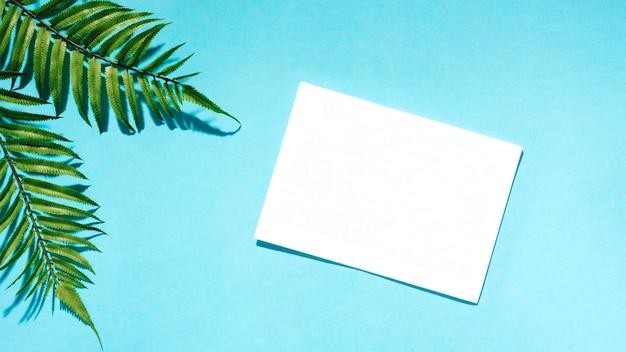 Libro bianco con foglie di palma sulla superficie colorata