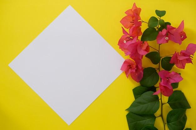Libro bianco del modello con spazio per testo o immagine su fondo e fiore gialli.