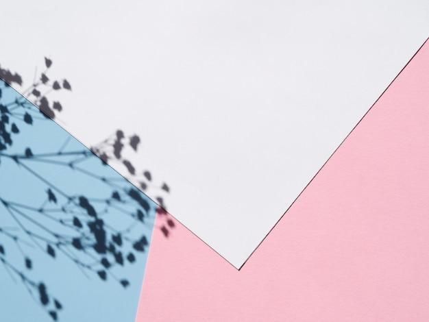 Libro bianco su sfondo con un'ombra di ramo di fiori