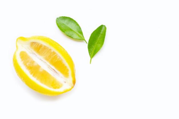 Limone isolato su sfondo bianco.