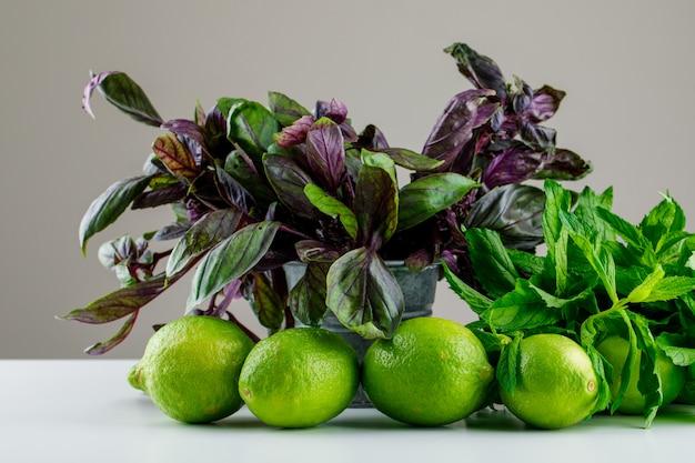 Limoni con foglie di basilico vista laterale su grigio e bianco