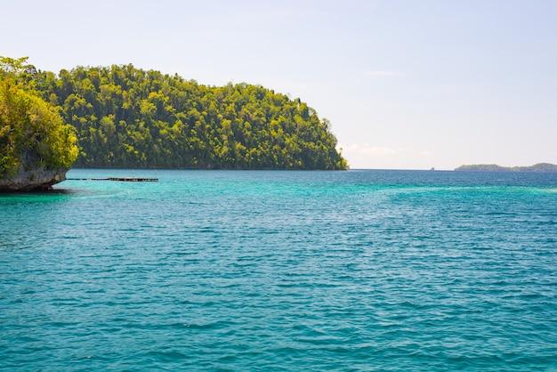 Linea costiera delle isole togean con la giungla verde fertile in mare del turchese, sulawesi, indonesia.