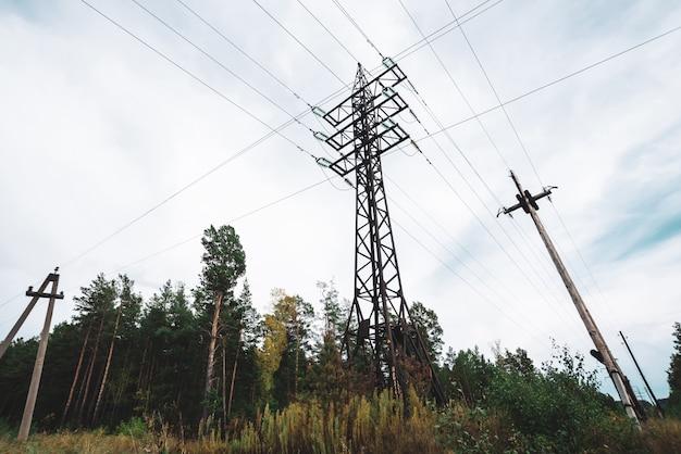 Linee elettriche ad alta tensione fra gli alberi sotto il cielo nuvoloso.