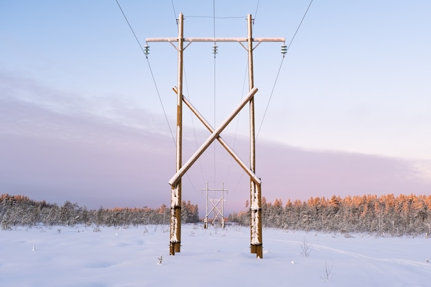 Linee elettriche di paesaggio invernale in un campo innevato vicino alla foresta