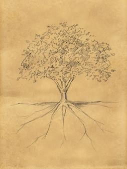 Lo schizzo dell'albero lascia e radice sulla carta