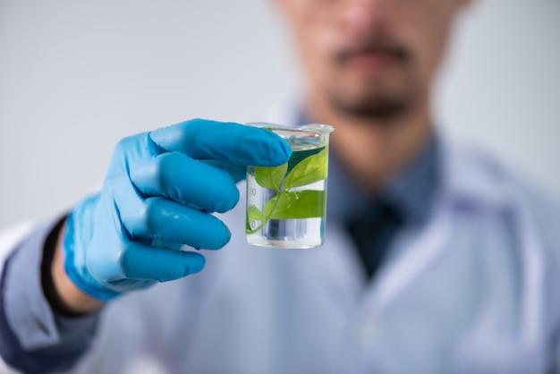 Lo scienziato testare l'estratto naturale del prodotto, la soluzione di olio e biocarburanti, nel laboratorio di chimica.