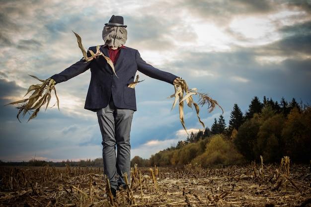 Lo spaventapasseri si leva in piedi nel campo di autunno contro il cielo di sera